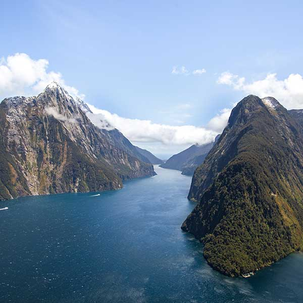 Milford Sound Highlights